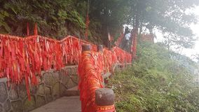 Rote Bänder in Nationalpark Zhangjiajie stockbild