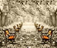 Rote Bänke der Weinlese im Park stockbild