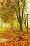Rote Bänke im Park lizenzfreie stockbilder