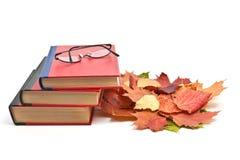 Rote Bücher u. Ahornblätter Stockbilder
