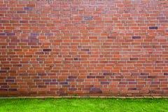 Rote Backsteinmauer mit grünem Gras Stockfotografie