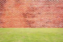 Rote Backsteinmauer mit grünem Gras Lizenzfreie Stockfotos