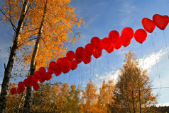 Rote Ballone im Fall-Wald Stockfotos