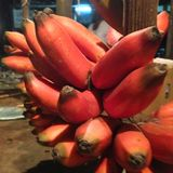Rote Bananen Stockfotografie