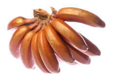 Rote Bananen getrennt Lizenzfreie Stockfotos