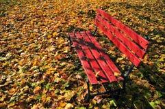 Rote Bank und Blätter Lizenzfreies Stockfoto