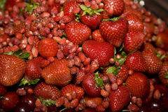 Rote Beeren Stockfotos
