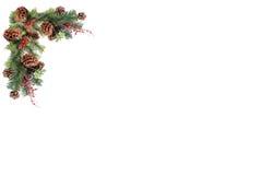 Rote Beeren der Weihnachtshintergrundtagkiefern-Kegel und verschalt durch festliche Girlande Lizenzfreie Stockbilder