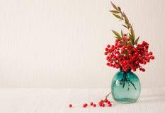 Rote Beeren des heiligen Bambusses (Platz für Text) Stockfotografie