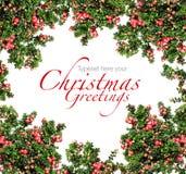 Rote Beeren Weihnachtsgirlande Lizenzfreies Stockbild