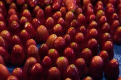 Rote Beschaffenheitstapeten und -hintergrund des rosafarbenen Apfels Lizenzfreie Stockbilder