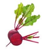 Rote-Bete-Wurzeln mit den Blättern lokalisiert auf Weiß Lizenzfreie Stockfotografie