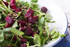 Rote-Bete-Wurzeln Salat Stockfoto