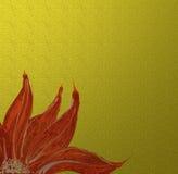 Rote Blume lizenzfreie stockfotos