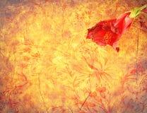Rote Blume auf buntem Hintergrund der Weinlese Stockbild