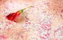 Rote Blume auf buntem Hintergrund der Weinlese Stockbilder