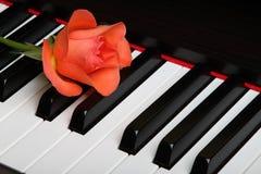 Rote Blume auf Klavier Stockfoto