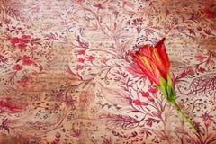 Rote Blume auf Weinleseschmutzhintergrund Stockfoto
