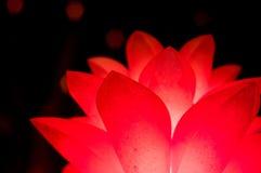 Rote Blume geformte Laterne lokalisiert auf Schwarzem Stockfoto