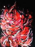Rote Blumen auf einem schwarzen Hintergrund Stockbild