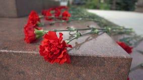 Rote Blumen auf einer Finanzanzeige Lizenzfreie Stockfotos