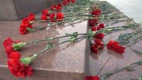 Rote Blumen auf einer Finanzanzeige Lizenzfreies Stockfoto