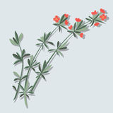 Rote Blumen-Blüte auf Niederlassungs-Ikonen-Illustrations-Vektor stock abbildung