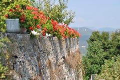 Rote Blumen in den Töpfen auf der Steinwand Stockfoto