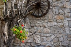 Rote Blumen in der künstlerischen Blumenanordnung mit Wagenrad stockbilder