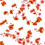 Rote Blumen des nahtlosen Musteraquarells auf einem weißen Hintergrund Stockfoto