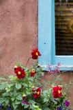 Rote Blumen, die ein New Mexiko-Fenster schmücken Stockfotos