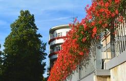 Rote Blumen an einem Balkon Stockfotografie