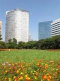 Rote Blumen in einem grünen Park in Tokyo Lizenzfreies Stockfoto