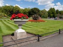 Rote Blumen im Park Lizenzfreies Stockfoto