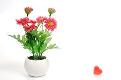 Rote Blumen im Topf der weißen Blume mit Herzen, künstlich Lizenzfreies Stockbild