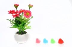 Rote Blumen im Topf der weißen Blume mit Herzen, künstlich Stockfoto