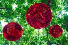 Rote Blumen im Wald Stockfotografie