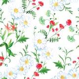 Rote Blumen und camomiles nahtloser Vektordruck lizenzfreie abbildung