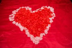 Rote Blumenliebe mit Hochzeit stockbilder