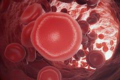 Rote Blutkörperchen in der Ader oder in der Arterie, des Flusses Innere nach innen ein lebender Organismus, Wiedergabe 3d Lizenzfreies Stockfoto