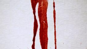 Rote Blutstropfen, die auf Weißbuch fallen stock video