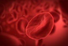 Rote Blutzelle Stockfotografie