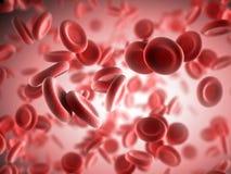 Rote Blutzellen Stockbild