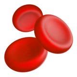 Rote Blutzellen (Erythrozyte), weiße Blutzellen (Lymphozyte und Phagozyt) und Plättchen (thrombocytes) Lizenzfreie Stockfotografie