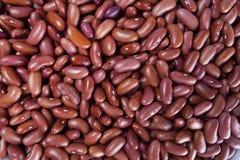 Rote Bohnen Lizenzfreie Stockfotos