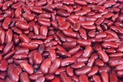 Rote Bohnen lizenzfreie stockbilder