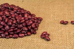 Rote Bohnen Lizenzfreies Stockbild