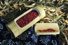 Rote Bohnen Stockfotos