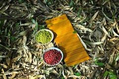 Rote Bohnen und grüne Bohnen Lizenzfreies Stockfoto