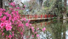 Rote Brücke mit Frühlings-Azaleen in South Carolina stockfotos